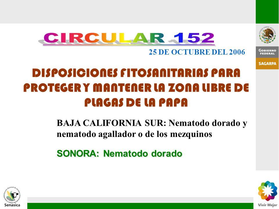 CIRCULAR 152 25 DE OCTUBRE DEL 2006. DISPOSICIONES FITOSANITARIAS PARA PROTEGER Y MANTENER LA ZONA LIBRE DE PLAGAS DE LA PAPA.