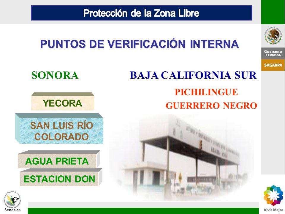 PUNTOS DE VERIFICACIÓN INTERNA