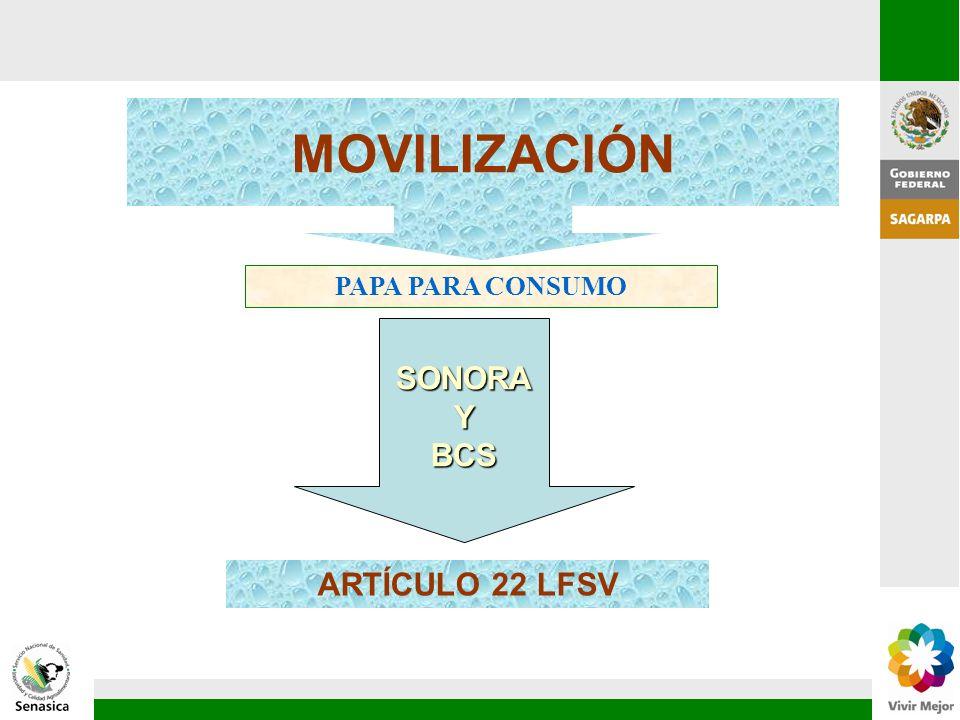 MOVILIZACIÓN PAPA PARA CONSUMO SONORA Y BCS ARTÍCULO 22 LFSV 75