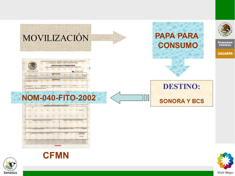 MOVILIZACIÓN CFMN PAPA PARA CONSUMO DESTINO: NOM-040-FITO-2002