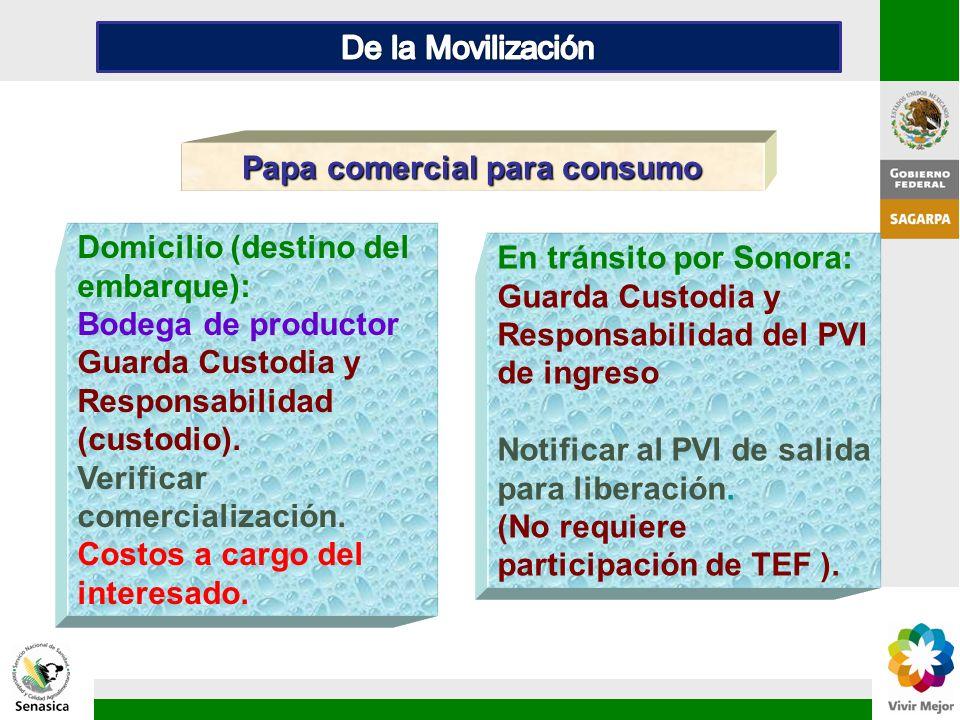 Papa comercial para consumo