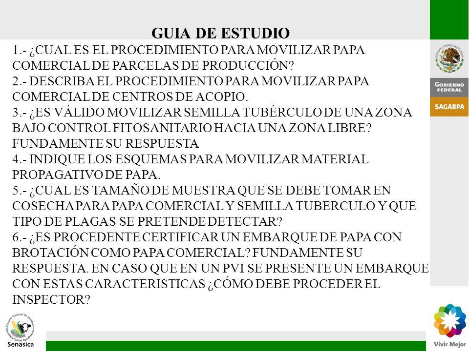 GUIA DE ESTUDIO 1.- ¿CUAL ES EL PROCEDIMIENTO PARA MOVILIZAR PAPA COMERCIAL DE PARCELAS DE PRODUCCIÓN