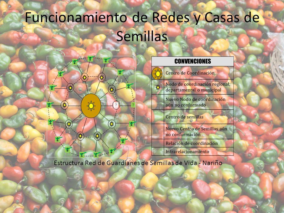 Funcionamiento de Redes y Casas de Semillas