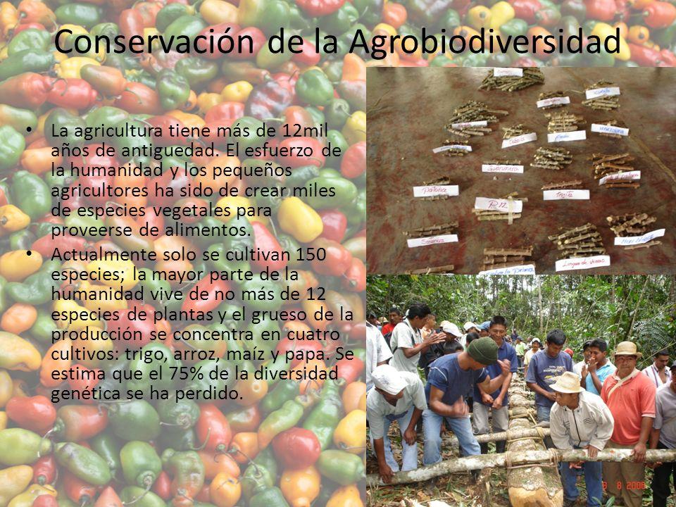 Conservación de la Agrobiodiversidad