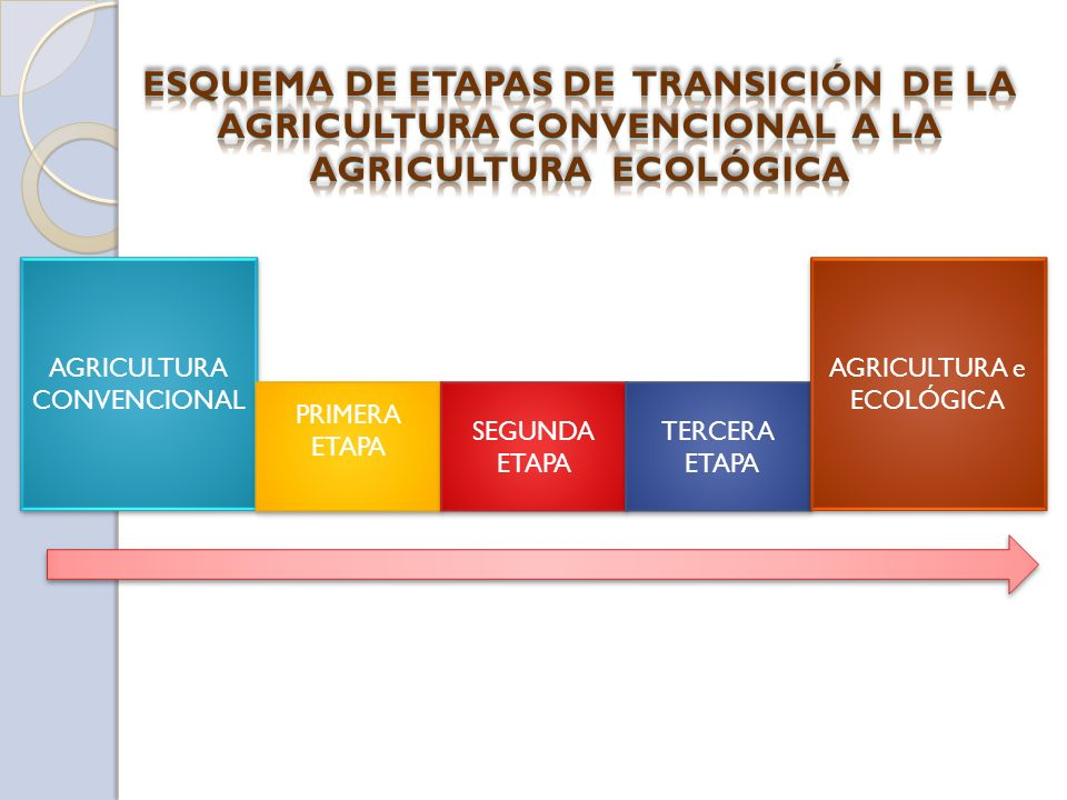 ESQUEMA DE ETAPAS DE TRANSICIÓN DE LA AGRICULTURA CONVENCIONAL A LA AGRICULTURA ECOLÓGICA