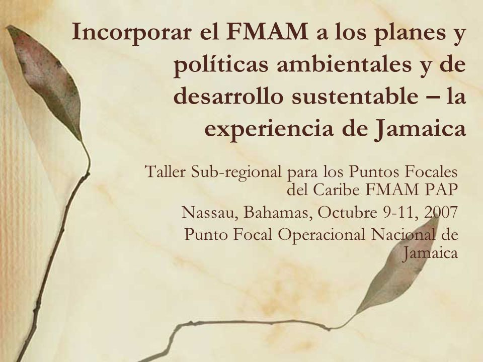 Incorporar el FMAM a los planes y políticas ambientales y de desarrollo sustentable – la experiencia de Jamaica