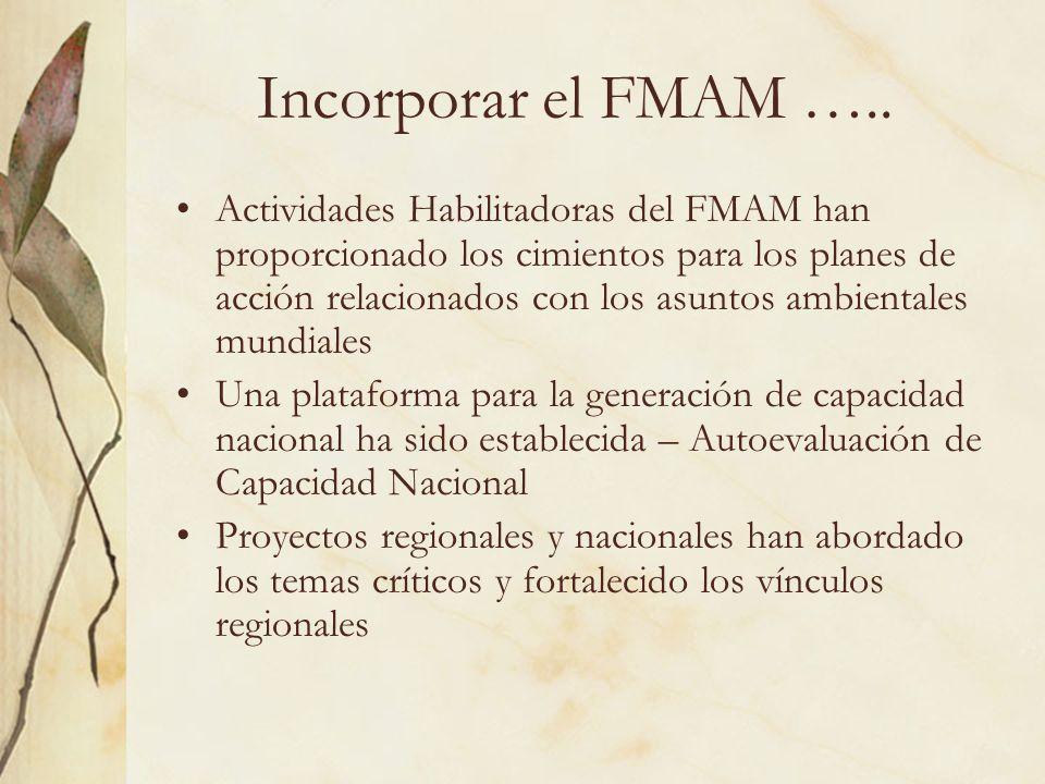 Incorporar el FMAM …..