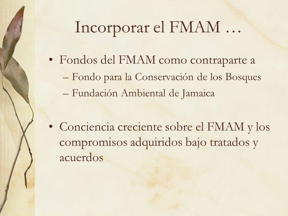 Incorporar el FMAM … Fondos del FMAM como contraparte a