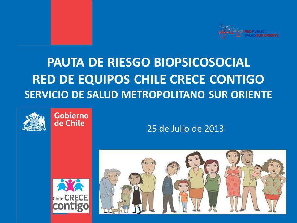 PAUTA DE RIESGO BIOPSICOSOCIAL RED DE EQUIPOS CHILE CRECE CONTIGO SERVICIO DE SALUD METROPOLITANO SUR ORIENTE