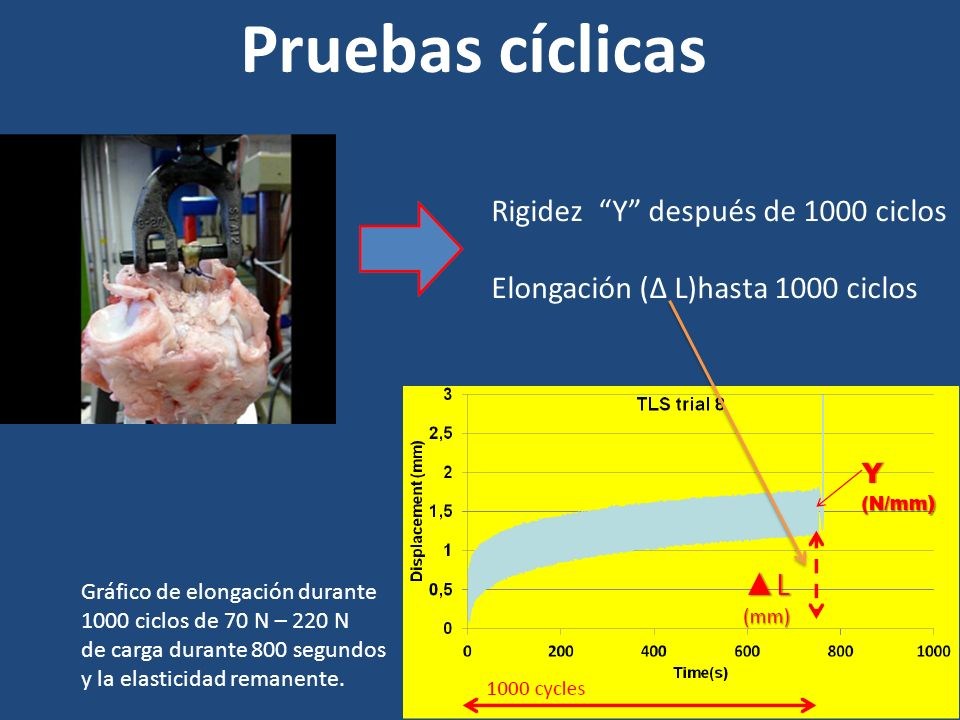 Pruebas cíclicas Rigidez Y después de 1000 ciclos