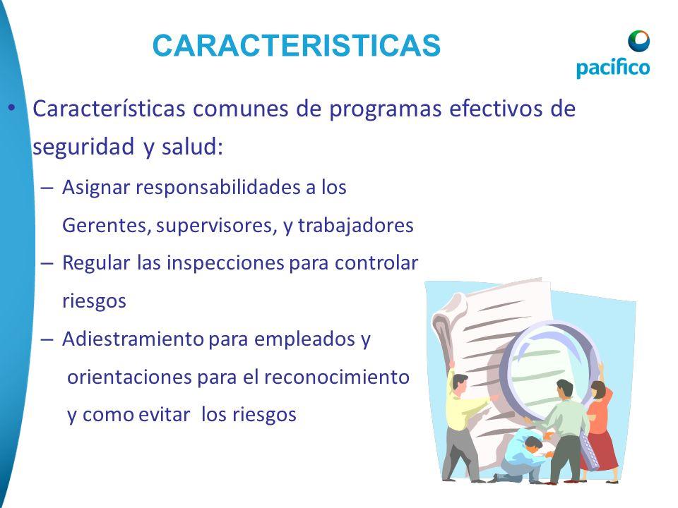 CARACTERISTICAS Características comunes de programas efectivos de seguridad y salud: Asignar responsabilidades a los.