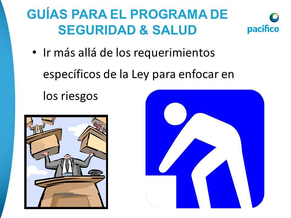 GUÍAS PARA EL PROGRAMA DE SEGURIDAD & SALUD