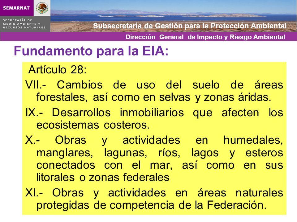 Fundamento para la EIA: