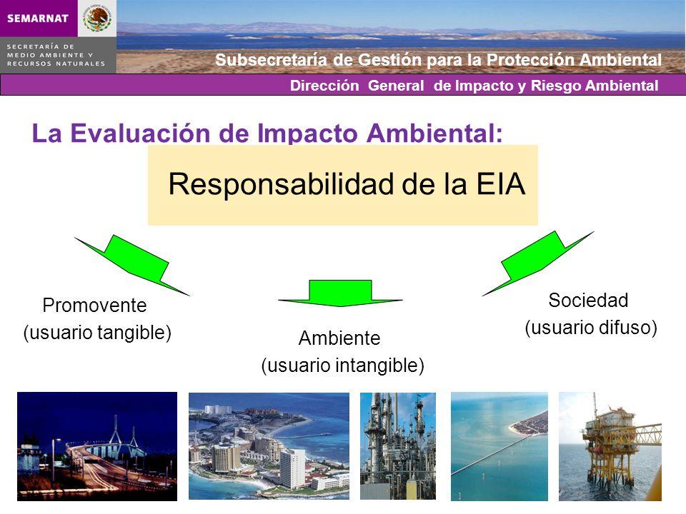 La Evaluación de Impacto Ambiental: