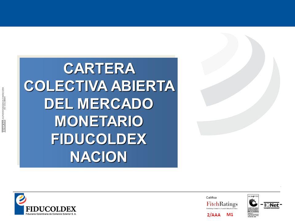 CARTERA COLECTIVA ABIERTA DEL MERCADO MONETARIO FIDUCOLDEX NACION