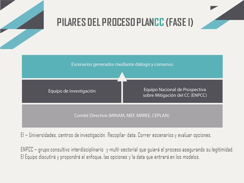 PILARES DEL PROCESO PLANCC (FASE I)