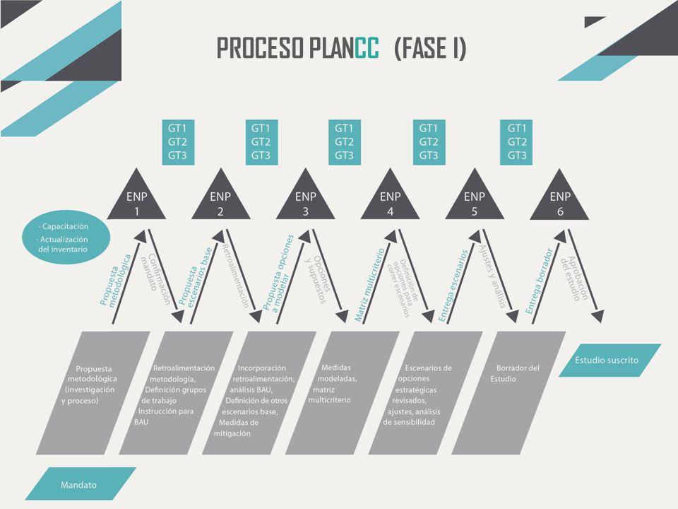 PROCESO PLANCC (FASE I)