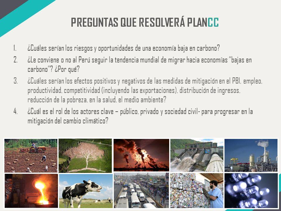 PREGUNTAS QUE RESOLVERÁ PLANCC