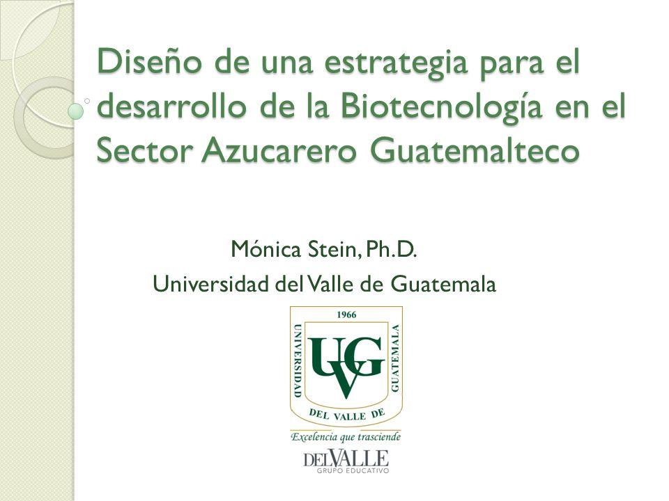 Mónica Stein, Ph.D. Universidad del Valle de Guatemala