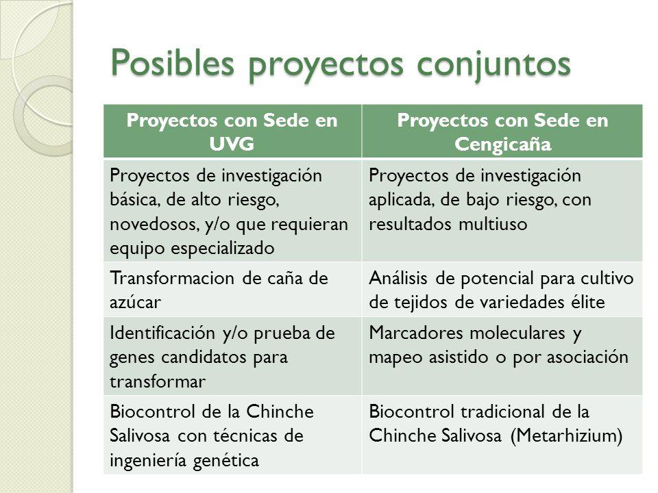 Posibles proyectos conjuntos