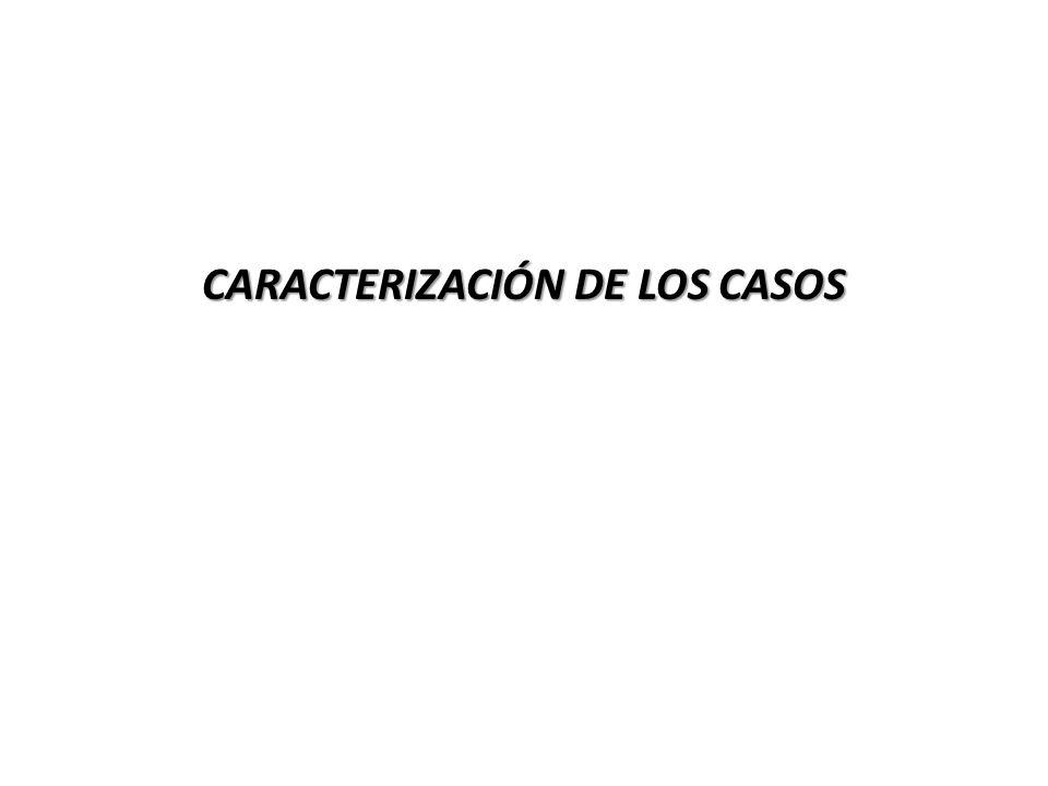 CARACTERIZACIÓN DE LOS CASOS