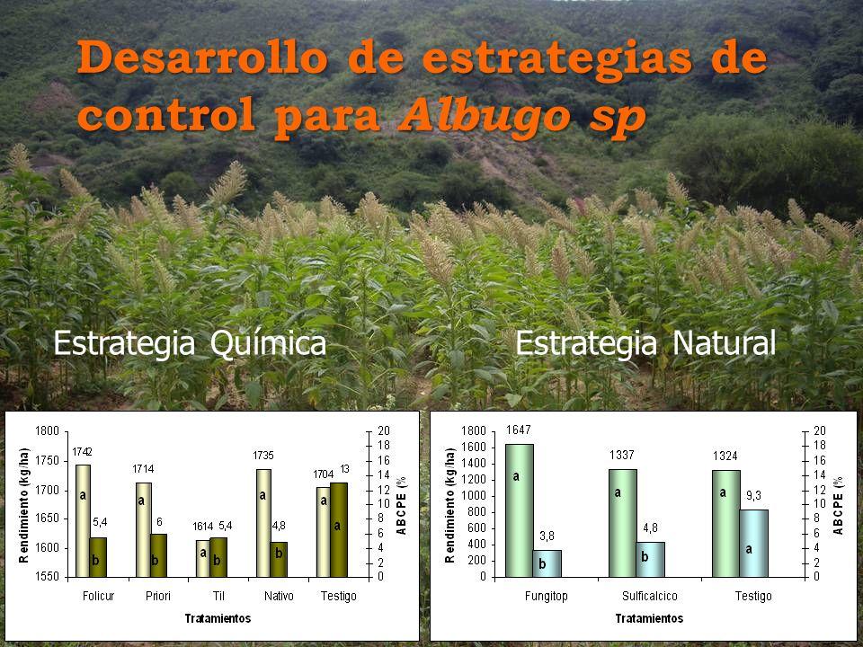 Desarrollo de estrategias de control para Albugo sp