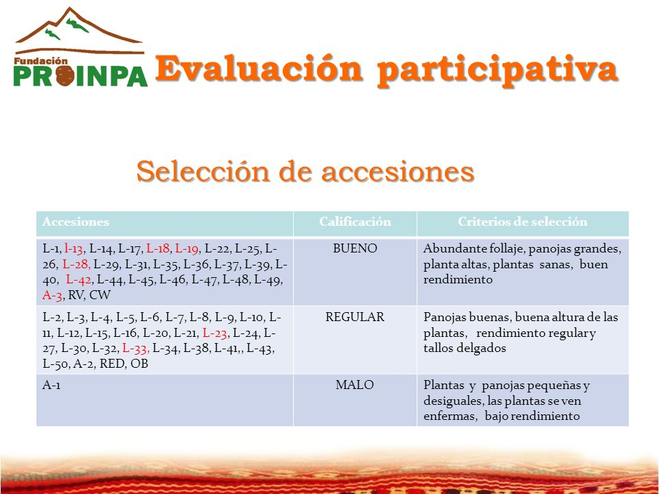Evaluación participativa Criterios de selección