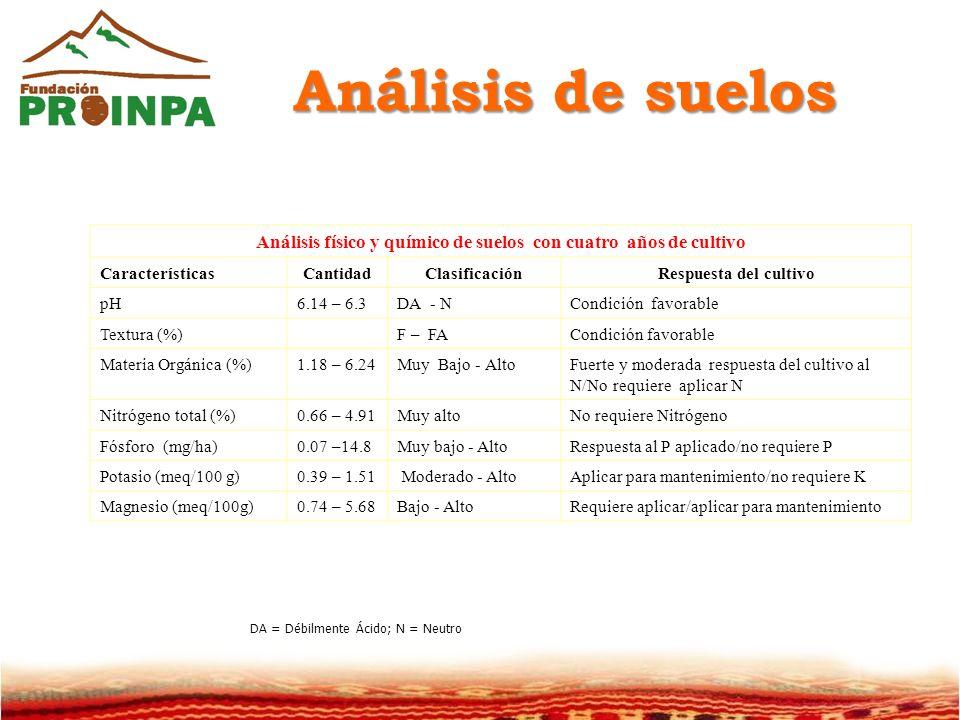 Análisis físico y químico de suelos con cuatro años de cultivo