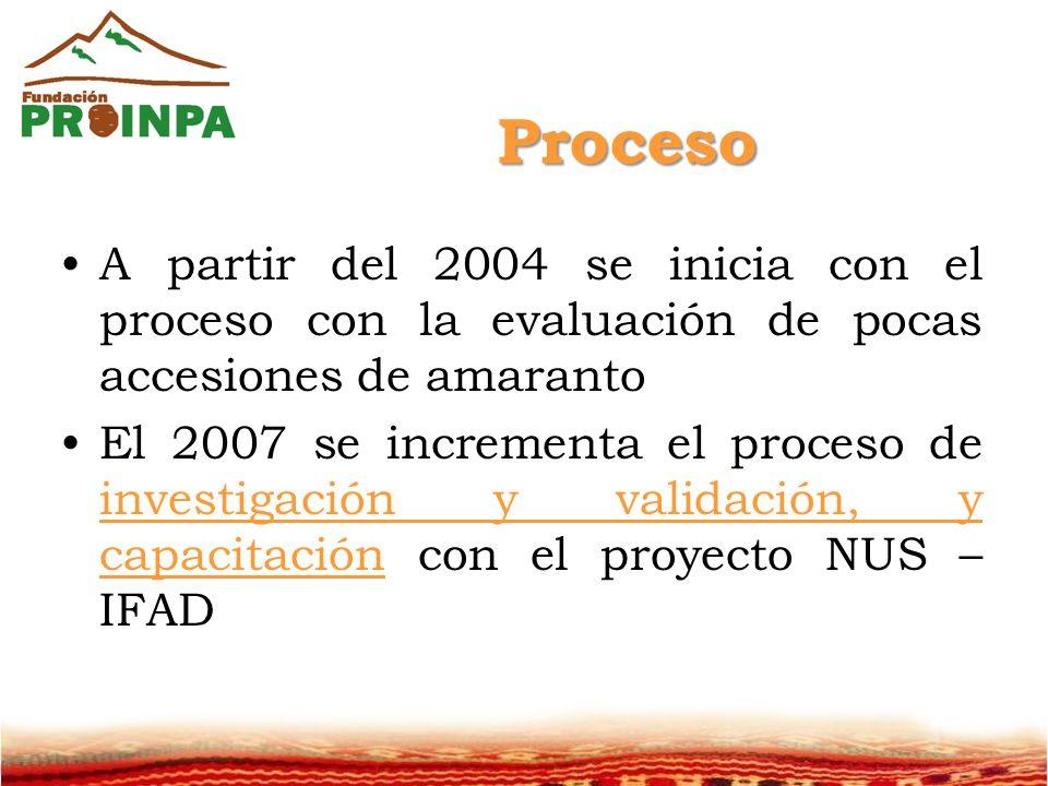 Proceso A partir del 2004 se inicia con el proceso con la evaluación de pocas accesiones de amaranto.