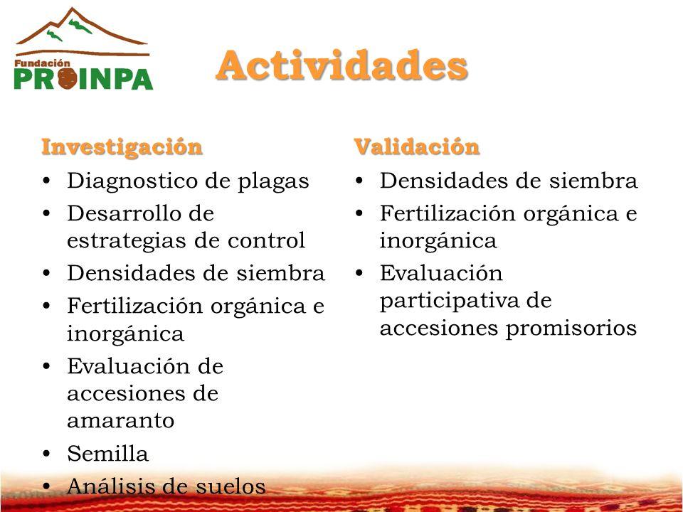 Actividades Investigación Validación Diagnostico de plagas