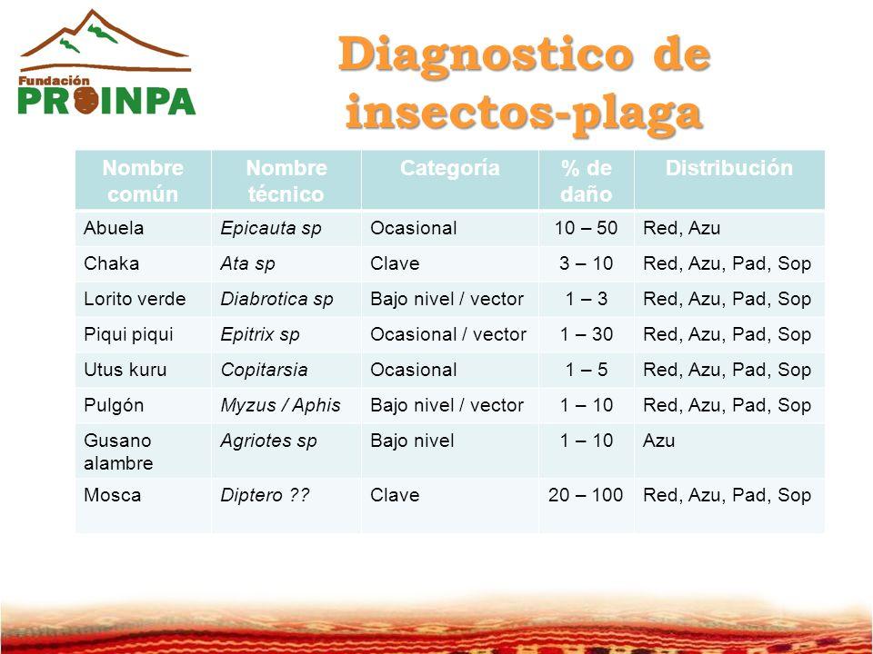 Diagnostico de insectos-plaga
