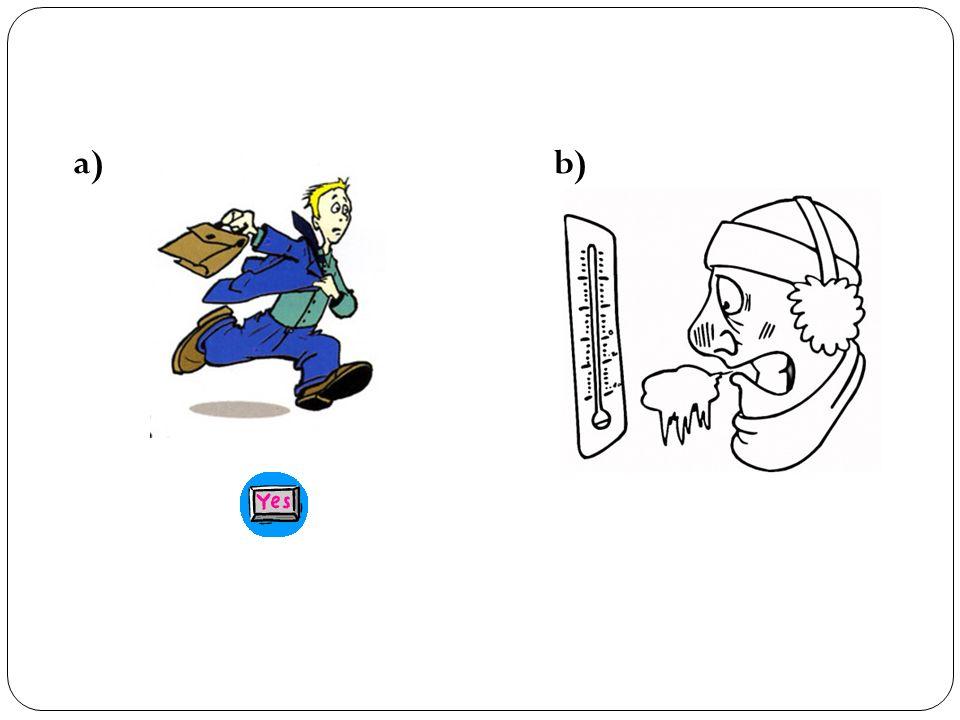 a) b) El pasajero factura su equipaje.