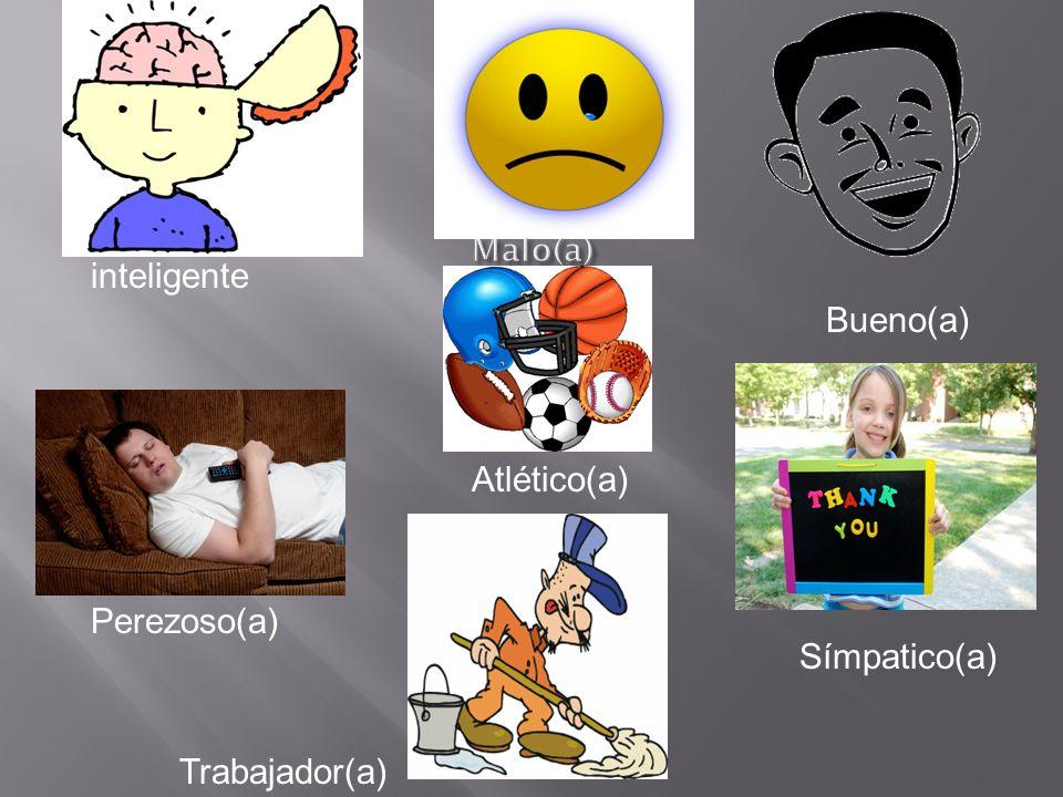 inteligente Bueno(a) Atlético(a) Perezoso(a) Símpatico(a)