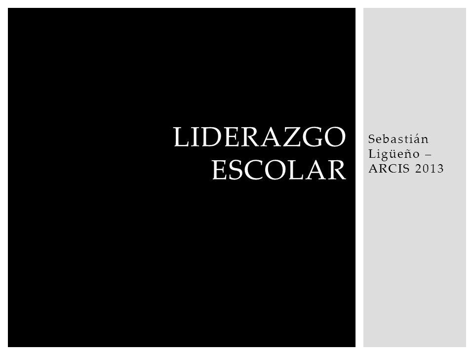 Sebastián Ligüeño – ARCIS 2013