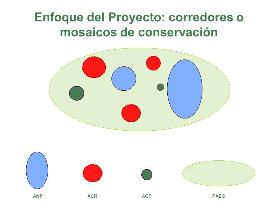 Enfoque del Proyecto: corredores o mosaicos de conservación