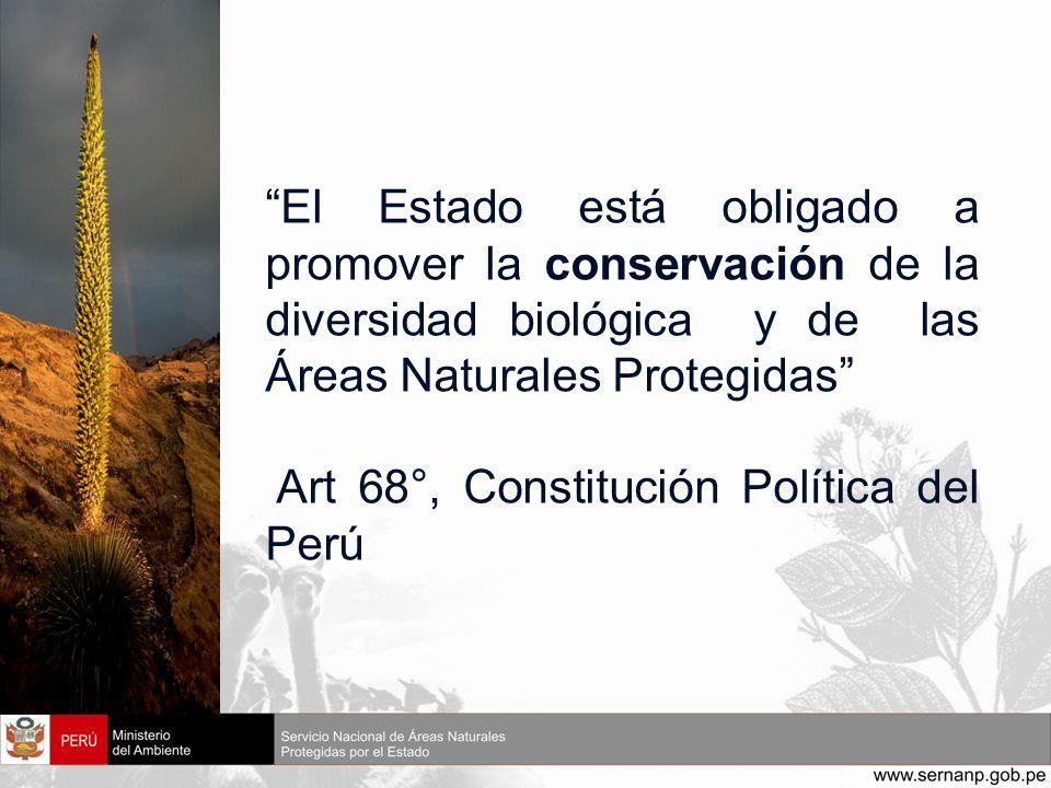 El Estado está obligado a promover la conservación de la diversidad biológica y de las Áreas Naturales Protegidas