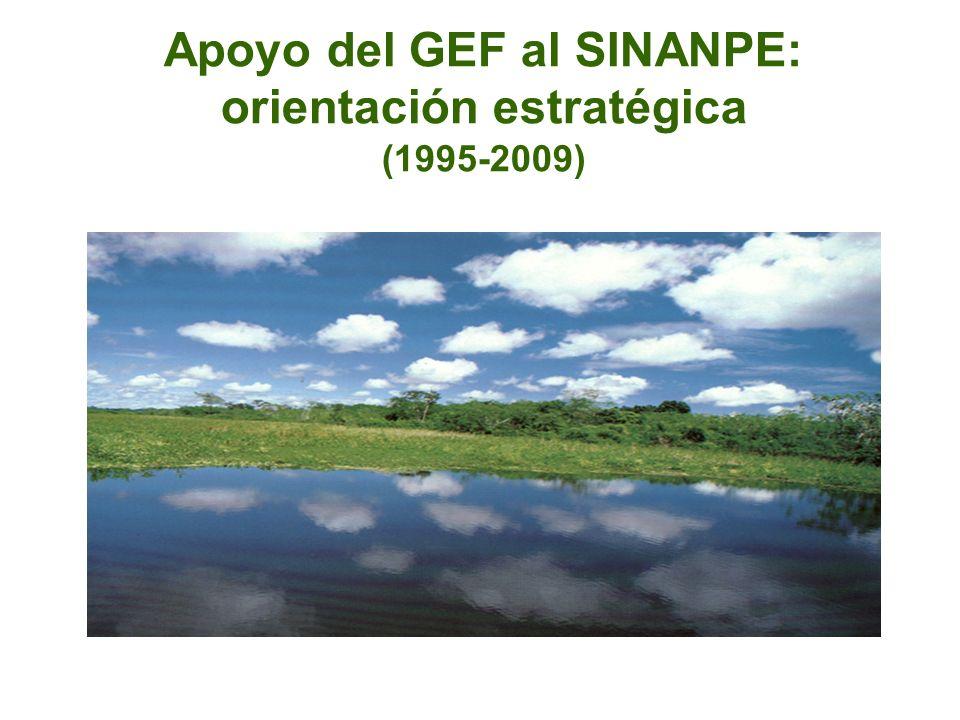 Apoyo del GEF al SINANPE: orientación estratégica (1995-2009)