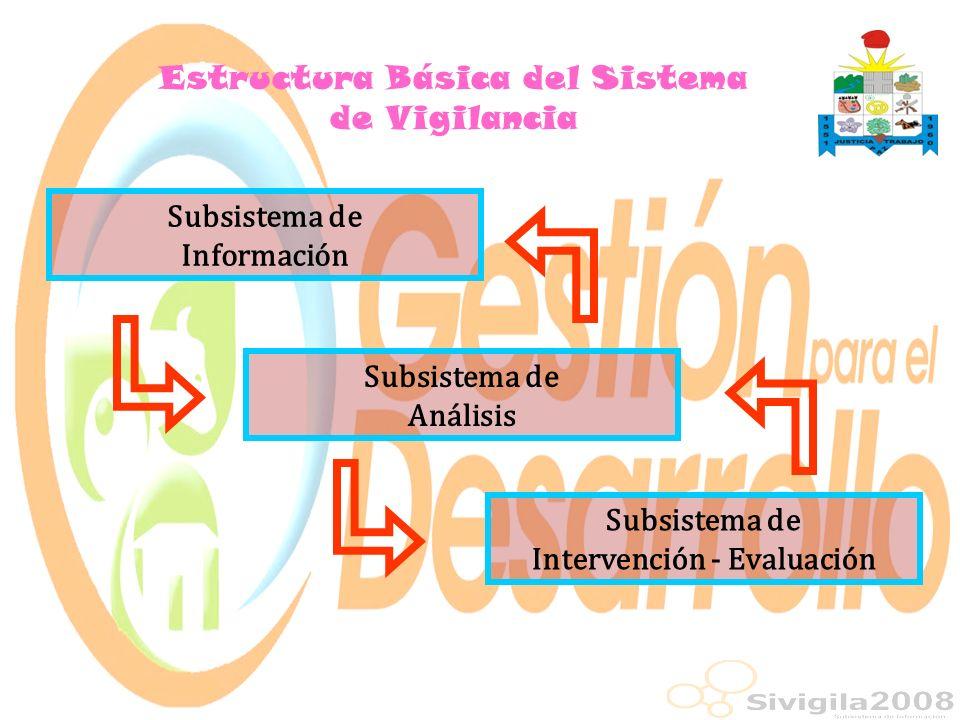 Estructura Básica del Sistema de Vigilancia