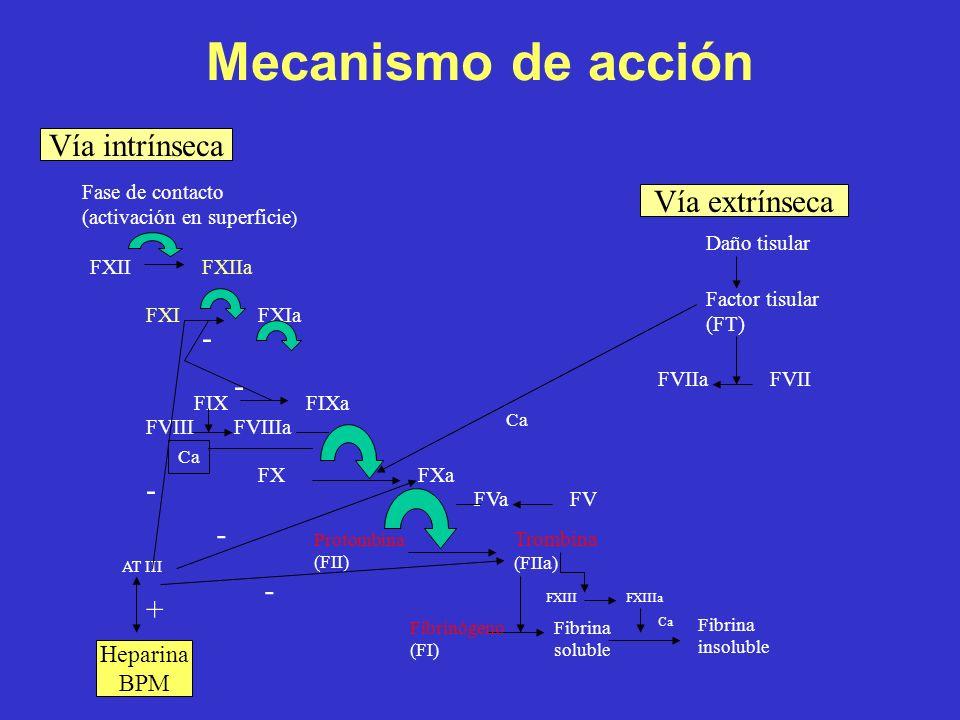 Mecanismo de acción Vía intrínseca Vía extrínseca - - - - - + Heparina