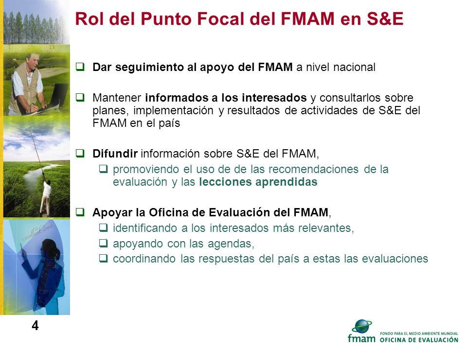 Rol del Punto Focal del FMAM en S&E