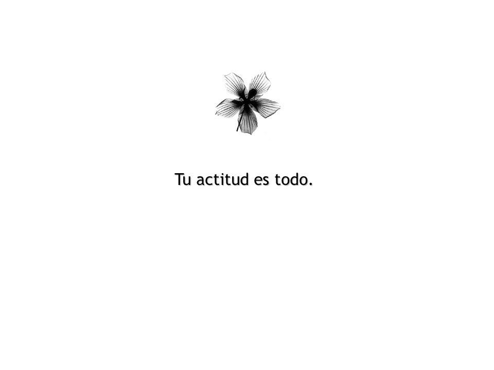 Tu actitud es todo.