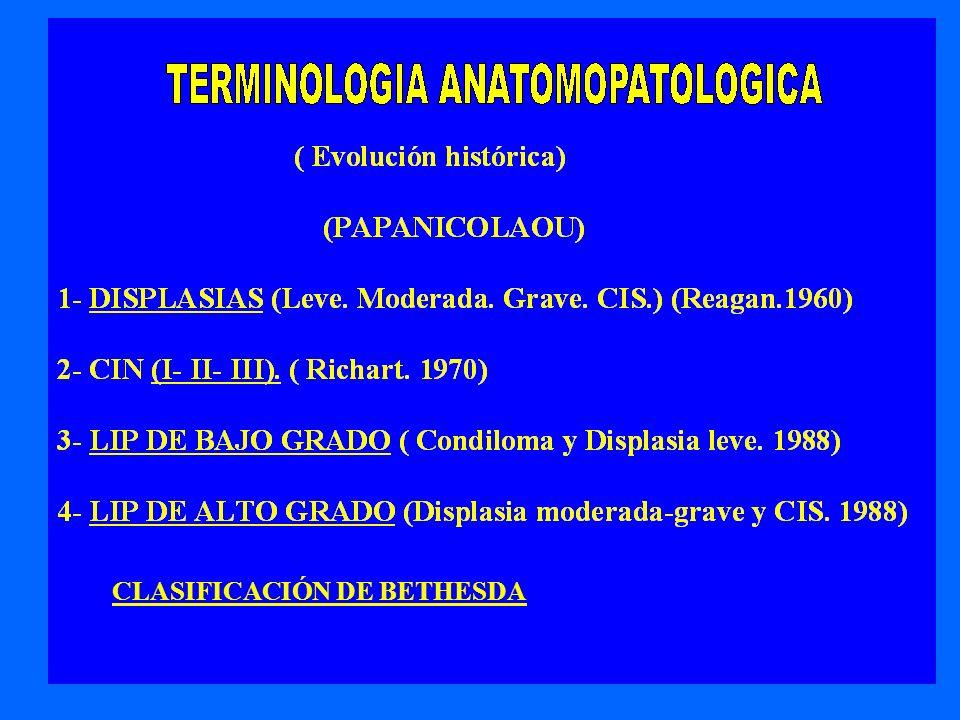 CLASIFICACIÓN DE BETHESDA