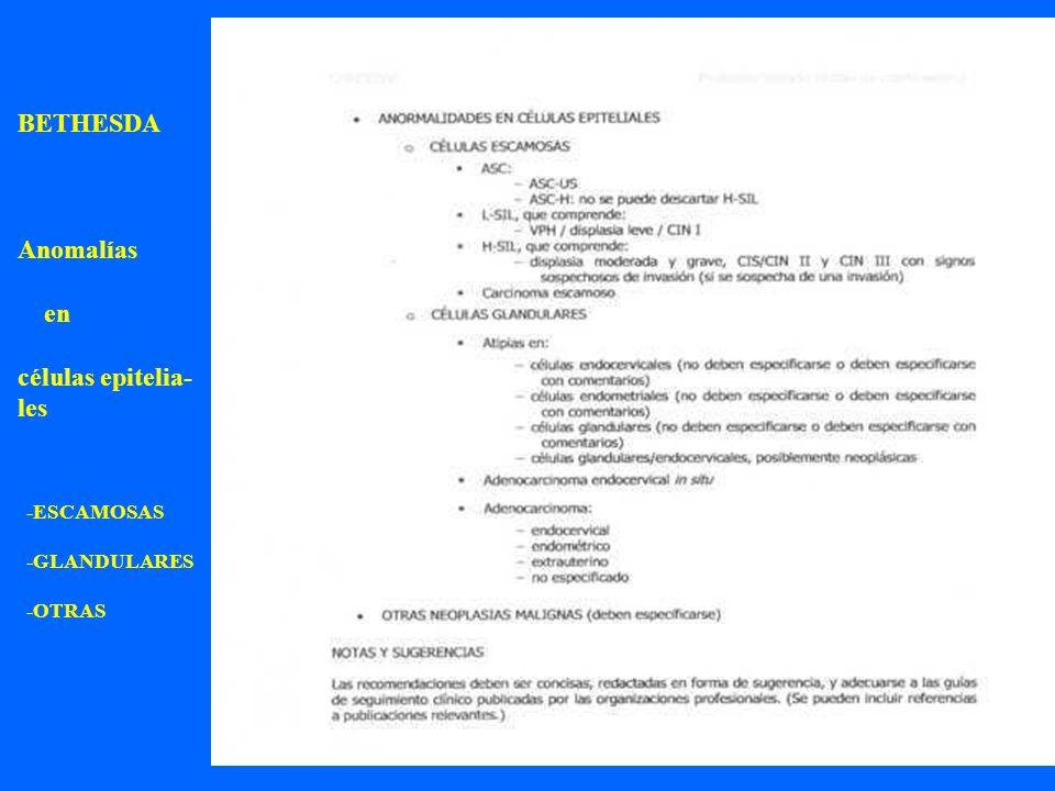 BETHESDA Anomalías en células epitelia- les -ESCAMOSAS -GLANDULARES