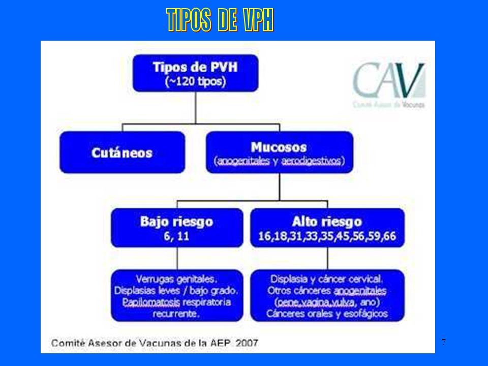 TIPOS DE VPH