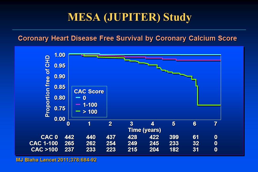 Coronary Heart Disease Free Survival by Coronary Calcium Score