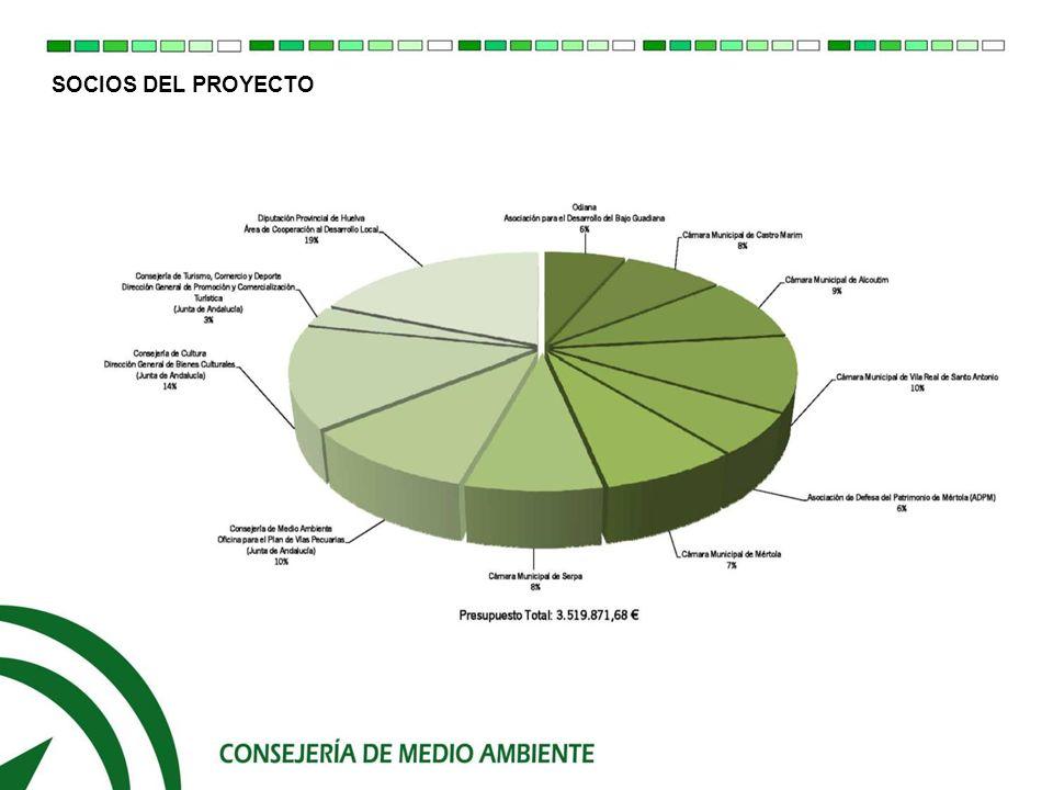 SOCIOS DEL PROYECTO 0.1.- Presentación