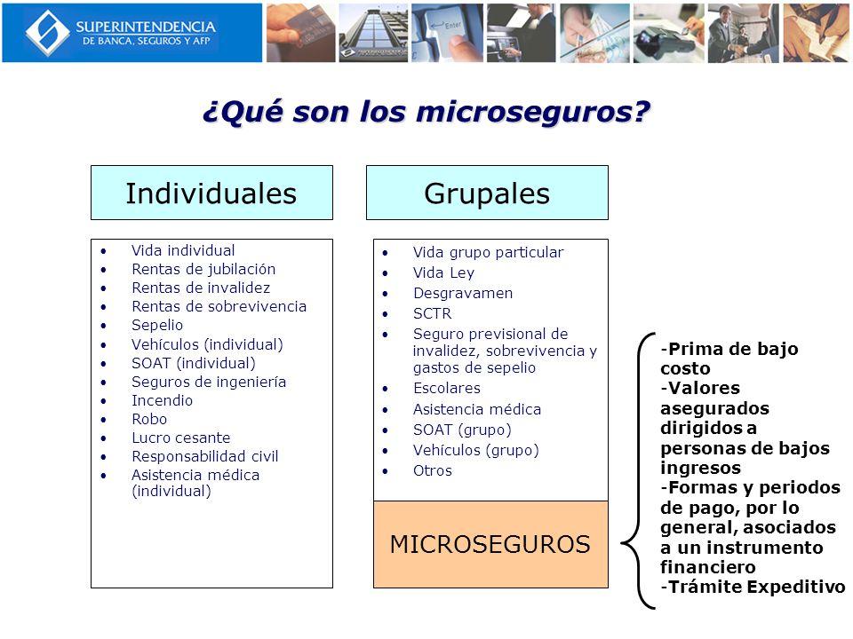 ¿Qué son los microseguros