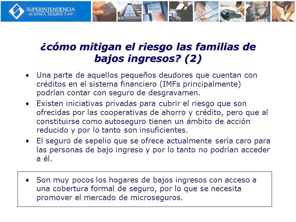 ¿cómo mitigan el riesgo las familias de bajos ingresos (2)