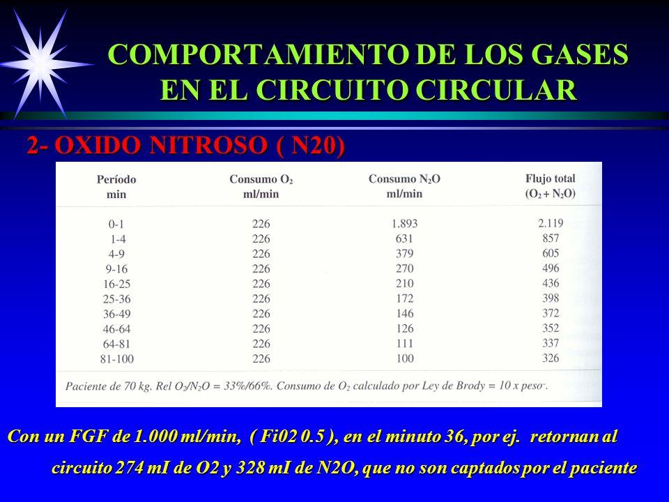 COMPORTAMIENTO DE LOS GASES EN EL CIRCUITO CIRCULAR