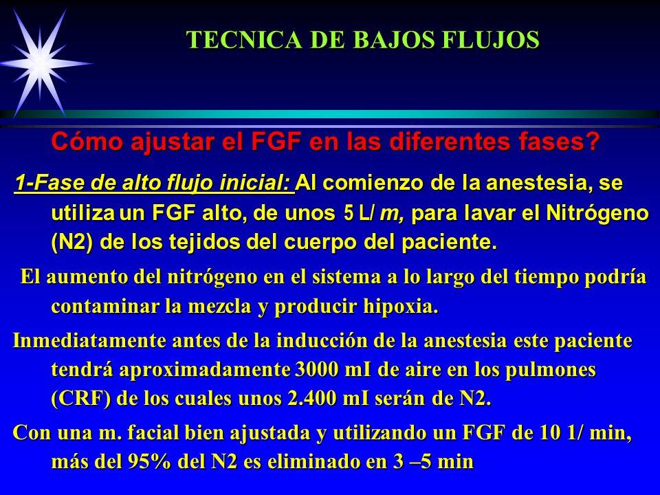 TECNICA DE BAJOS FLUJOS